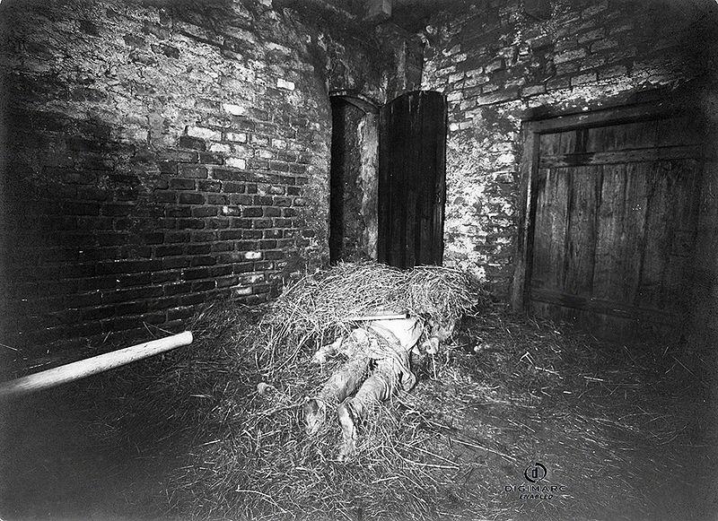 V roku 1922 šokovala celé Nemecko vražda šiestich ľudí na jednej farme v Hinterkaifeck. Tento prípad nebol do dnešného dňa vyriešený. V tej dobe bolo vypočutých vyše sto ľudí. Šesť mesiacov pred vraždou z tadiaľ odišla slúžka ktorá tvrdila, že sú na farme zlí duchovia. O peniaze pri tejto vražde nešlo, na farme ich ostalo mnoho. Ten kto to spravil, žil potom na farme ešte pár dní, kŕmil zvieratá, jedol jedlo v kuchyni a susedia vraveli, že sa dymilo z komína...