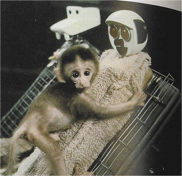 """Na dvoch opiciach bol vykonaný experiment už od malička. Jedna opica mala matku a bola normálne vychovávaná u od mala. Tá druhá mala """"robotickú"""" matku, ktorá jej dávala len mlieko. Experiment dokázal a ukázal ako je dôležité mať matku a zároveň to bol prv experiment ktorý niečo takéto skúmal."""