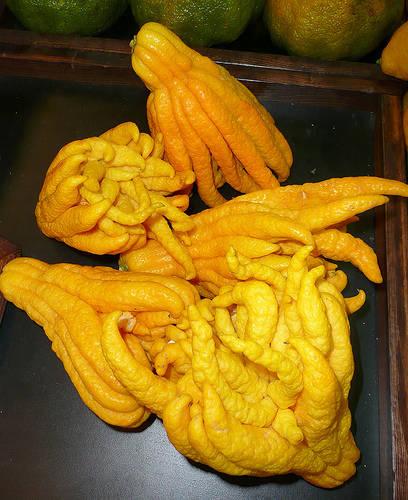 Buddhová ruka.