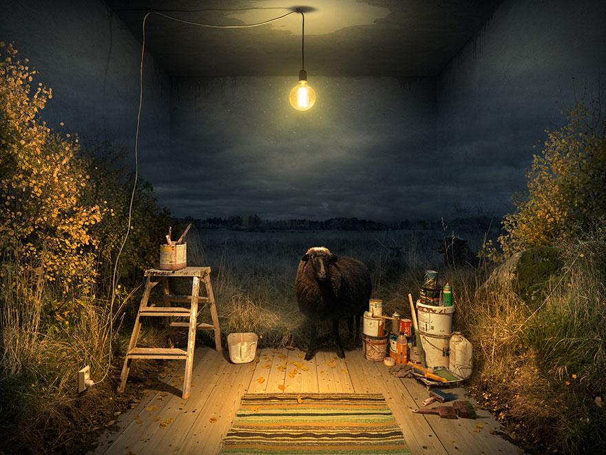 optical-illusions-photo-manipulation-surreal-eric-johansson-9