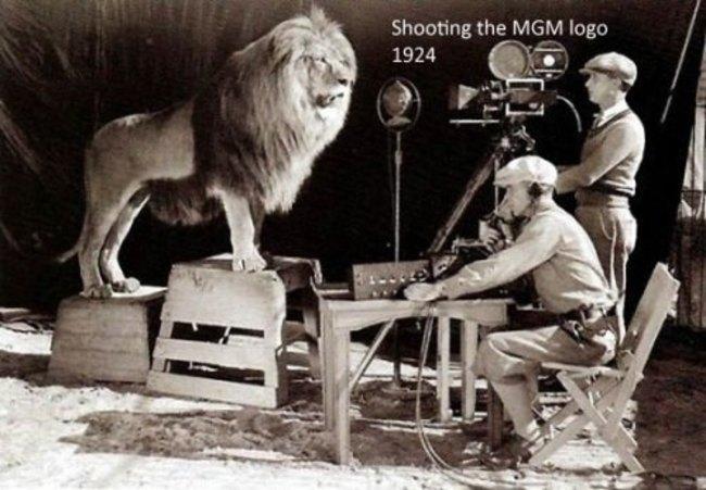 Natáčanie slávnej scény MGM Lion.