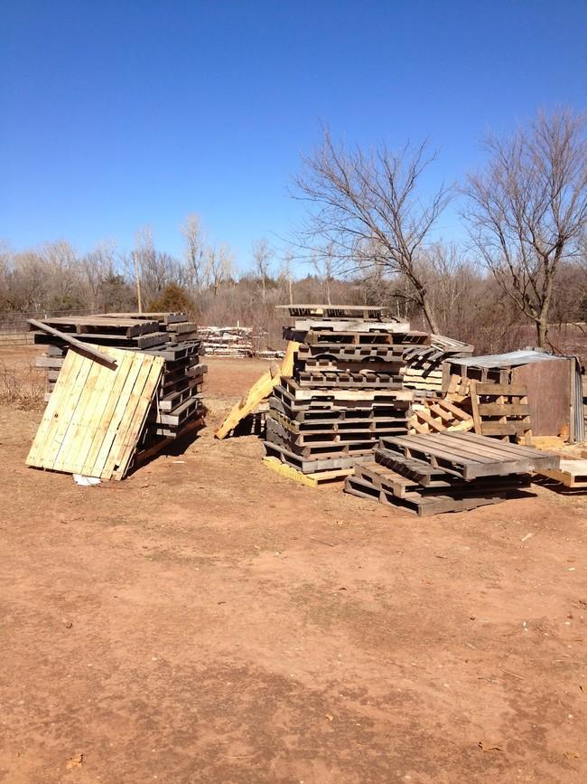 Našli si staré drevené palety..