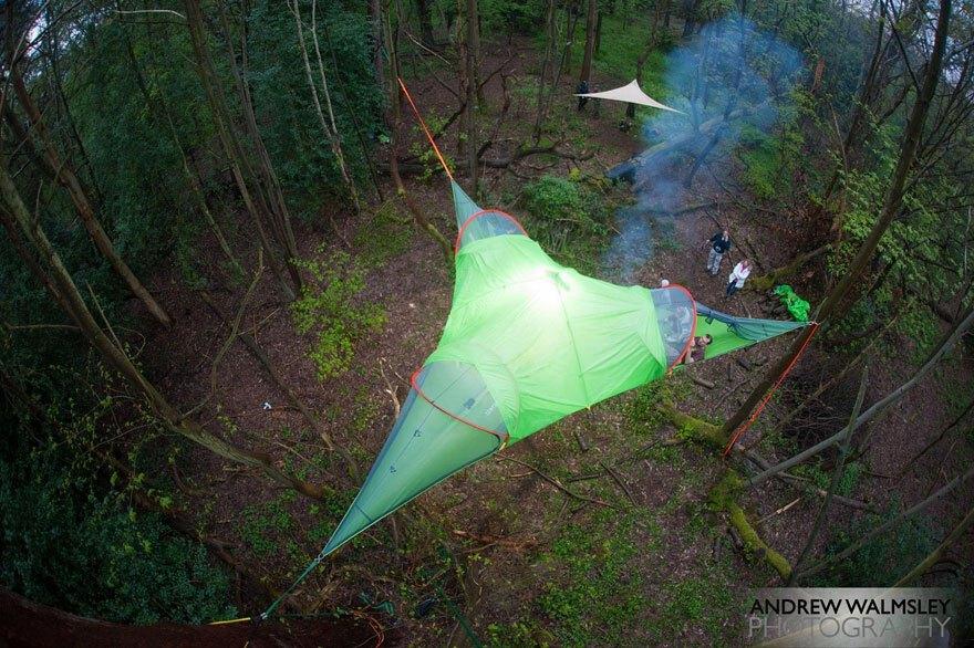 tree-tent4