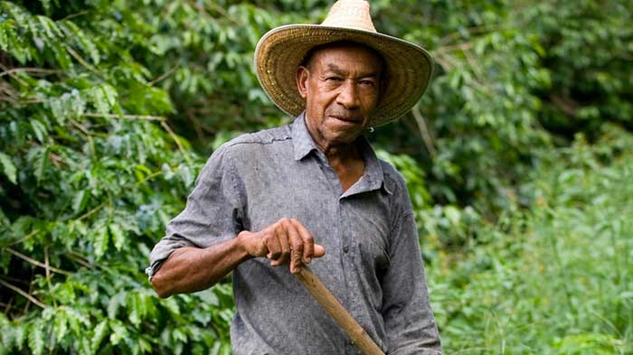 Pablo farmar jose