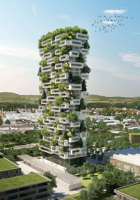 zeleny-dom