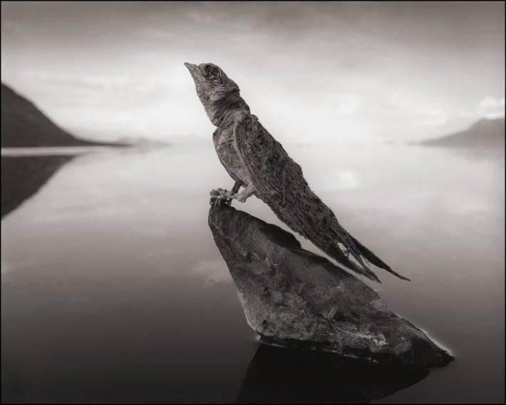 jazero Natron 2