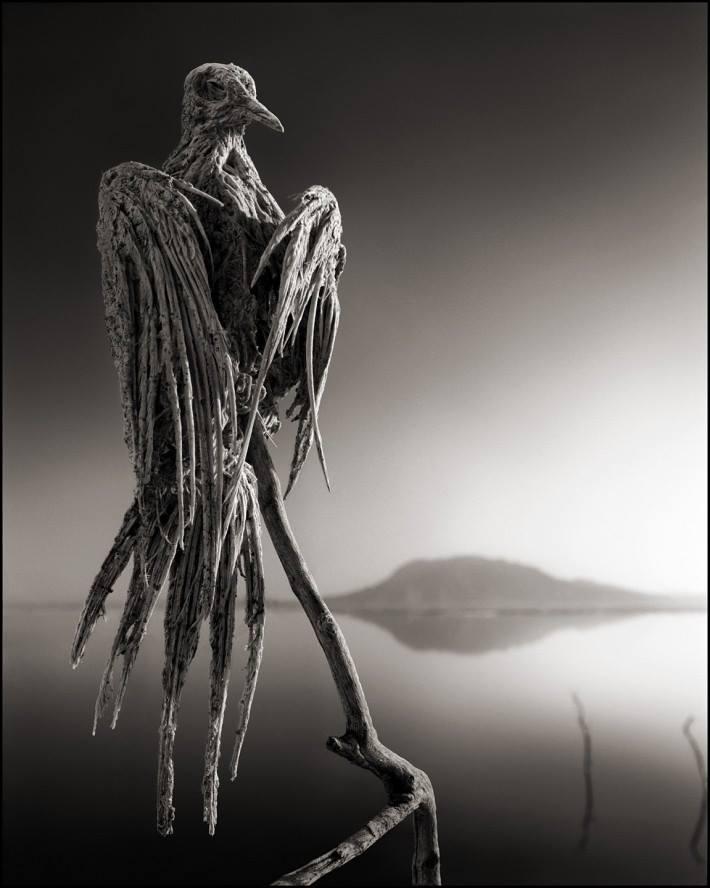 jazero Natron 3