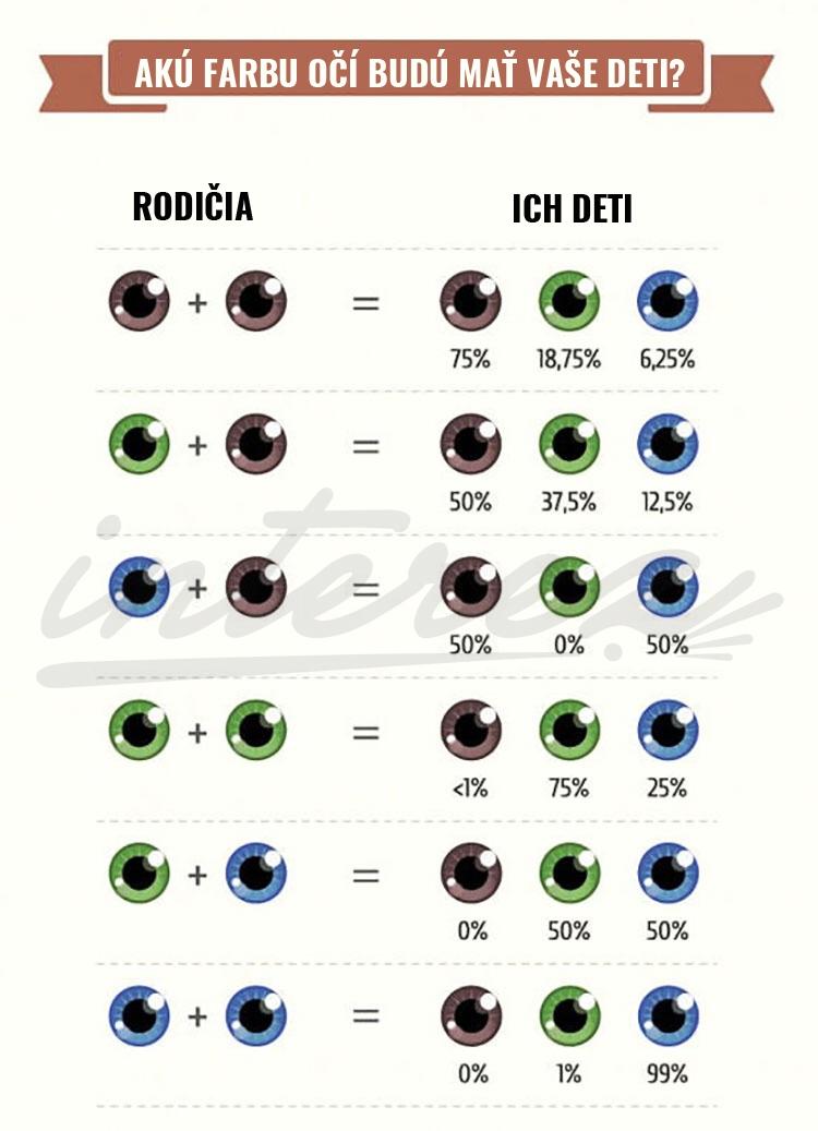 genetika3