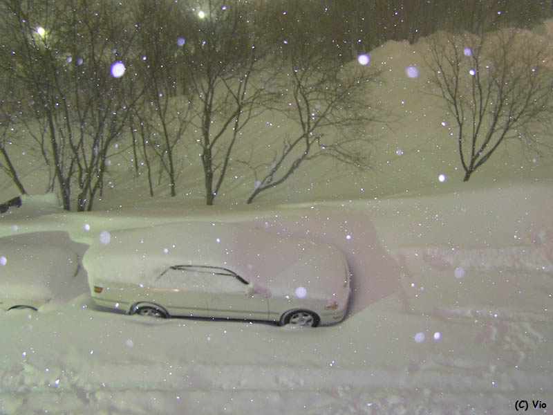 sneh-kamcatka