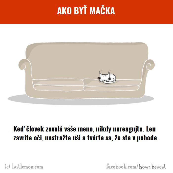 macky1
