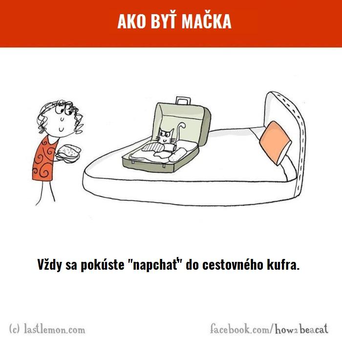 macky4