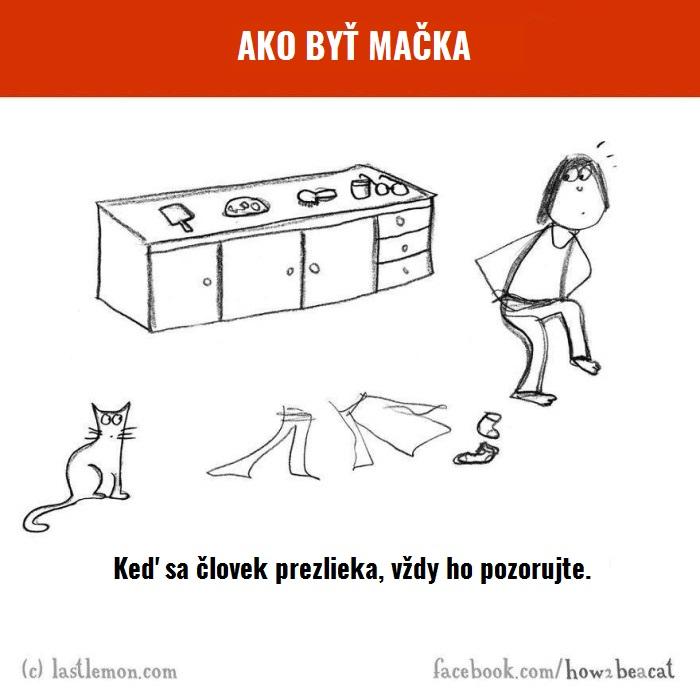 macky5