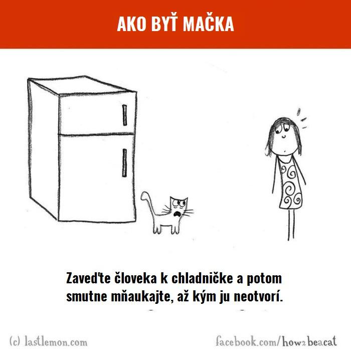 macky7