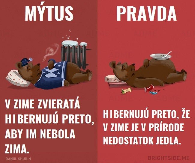 mytyzvierata12