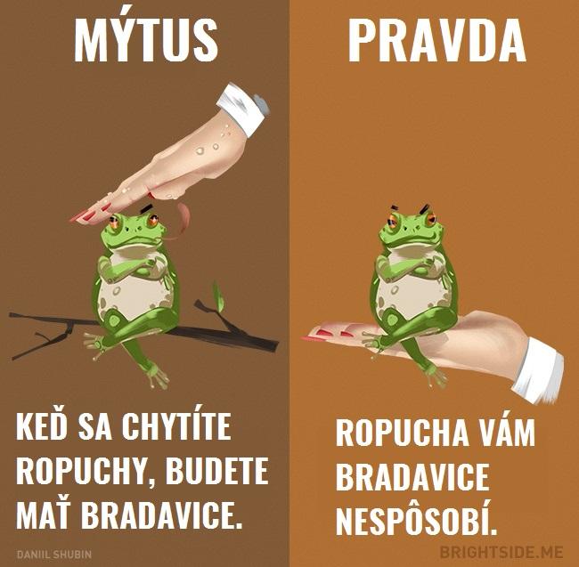 mytyzvierata4