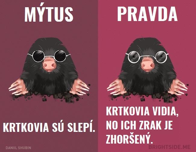 mytyzvierata8