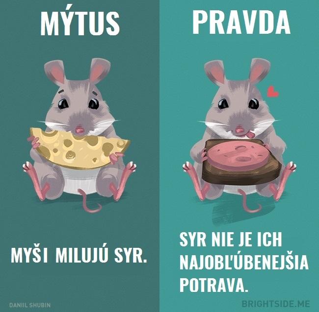mytyzvierata9