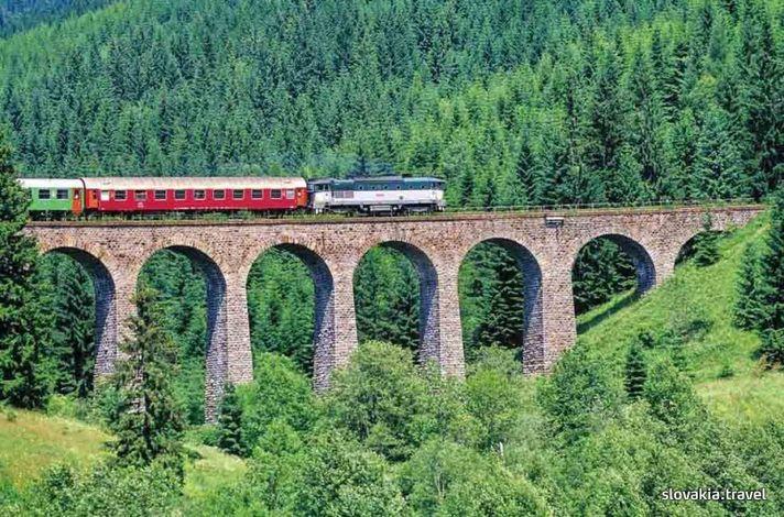 vlak19