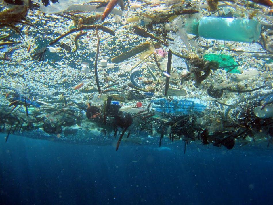 marinedebris.noaa.gov