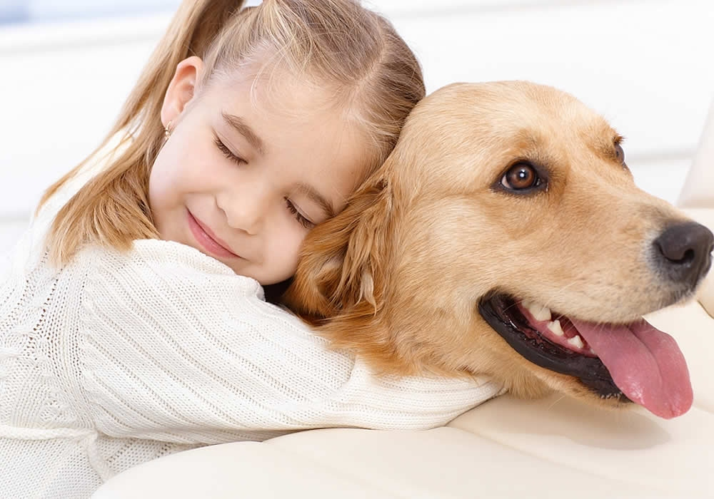 co nemaju psy radi (3)